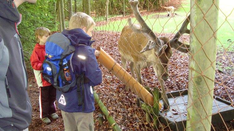 Familienprogramm: Abenteuer Kletterpark Bad Waldsee